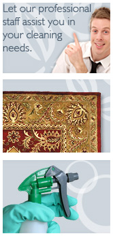 new-york-carpet-cleaning.us